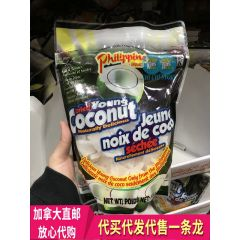 Philippine Brand 椰子片 Dried Young Coconut 510g
